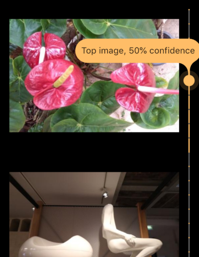 Choose Image page